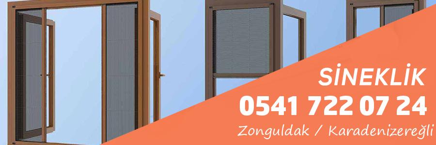 Zonguldak Karadenizereğli Sineklik Hizmeti